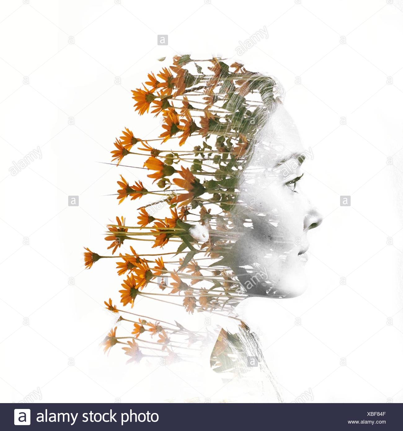 Digital Composite Of Woman Head With Flowers - Stock Image