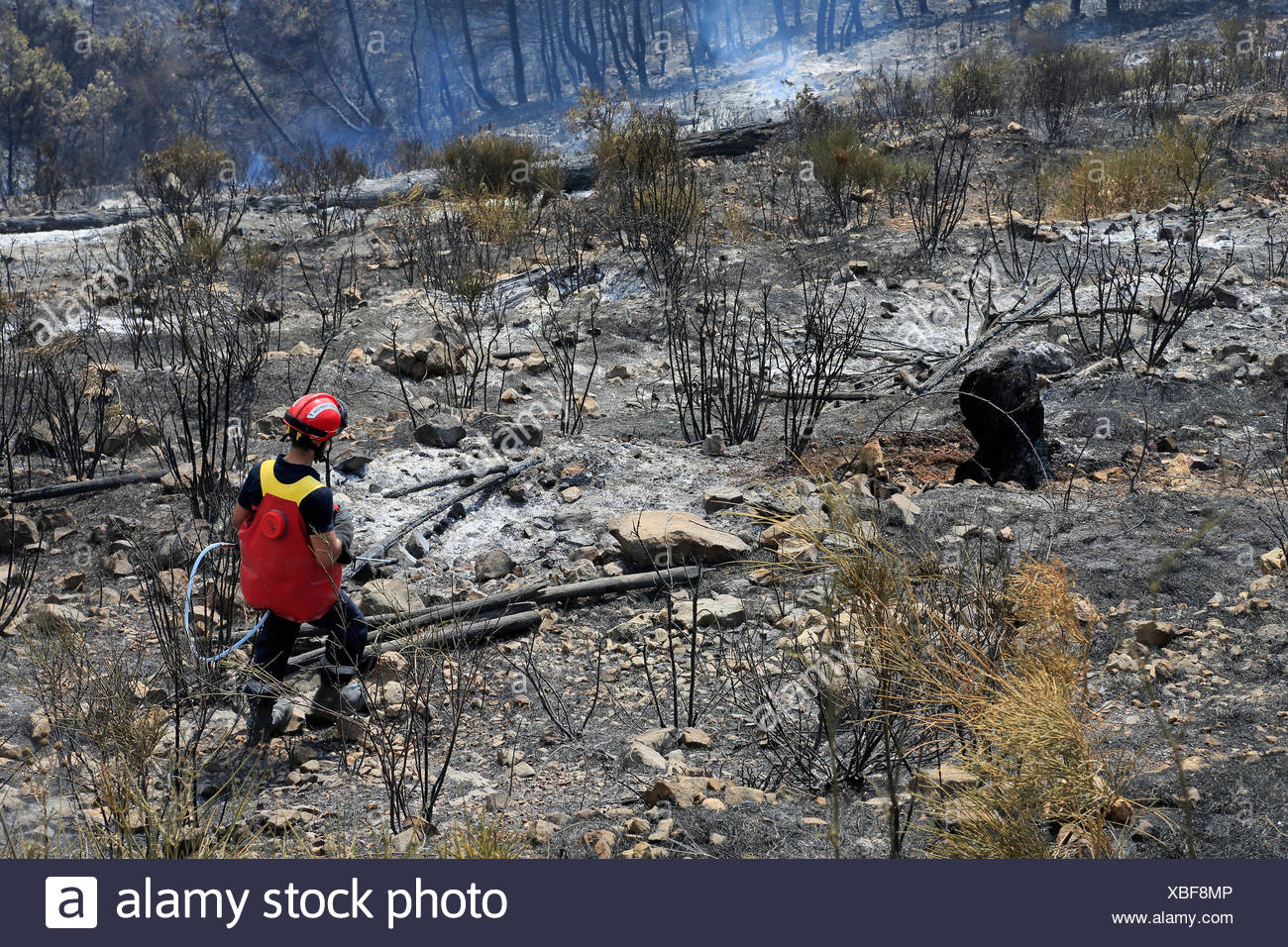Firefighter, fighting fire, forest fires in Castellar, Maritime Alps, Provence-Alpes-Côte d'Azur, France, - Stock Image
