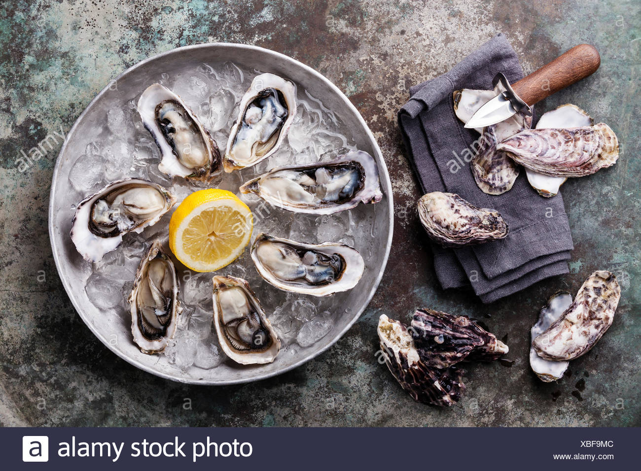Opened Oysters on metal plate with ice and lemon on metal background - Stock Image