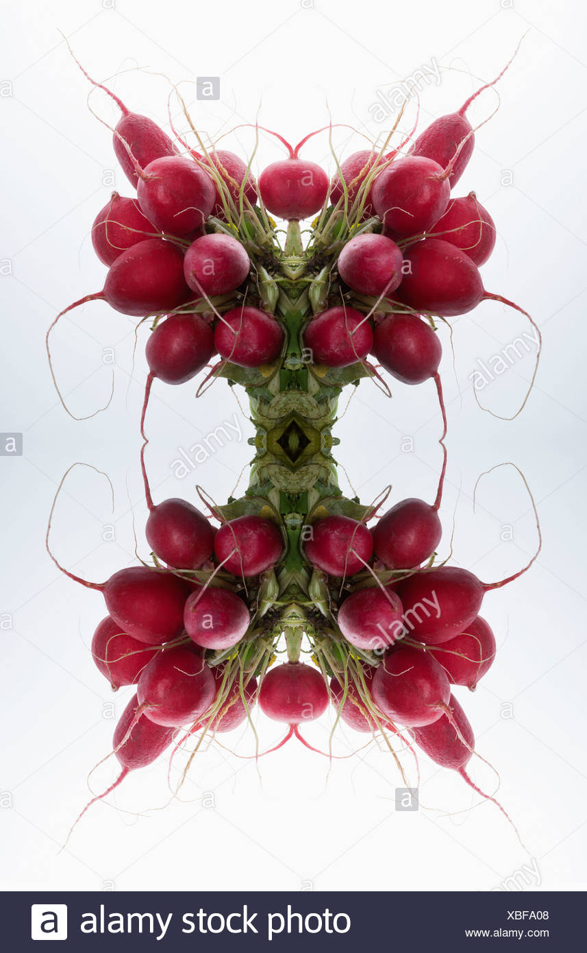 A digital composite of mirrored images of bunches of radishes - Stock Image