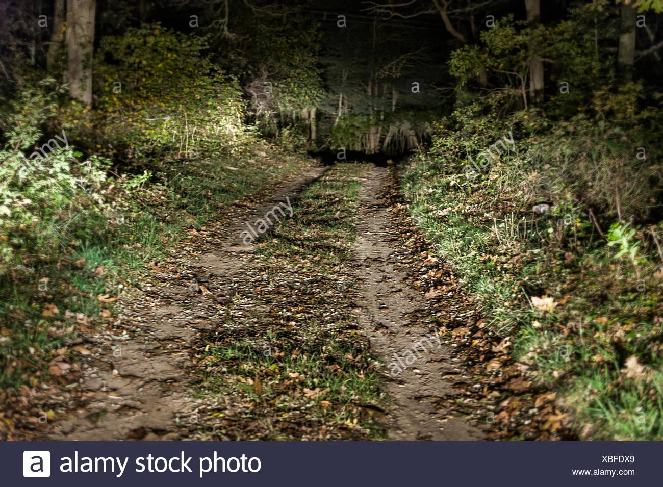 Foreboding dirt road at night. - Stock Image