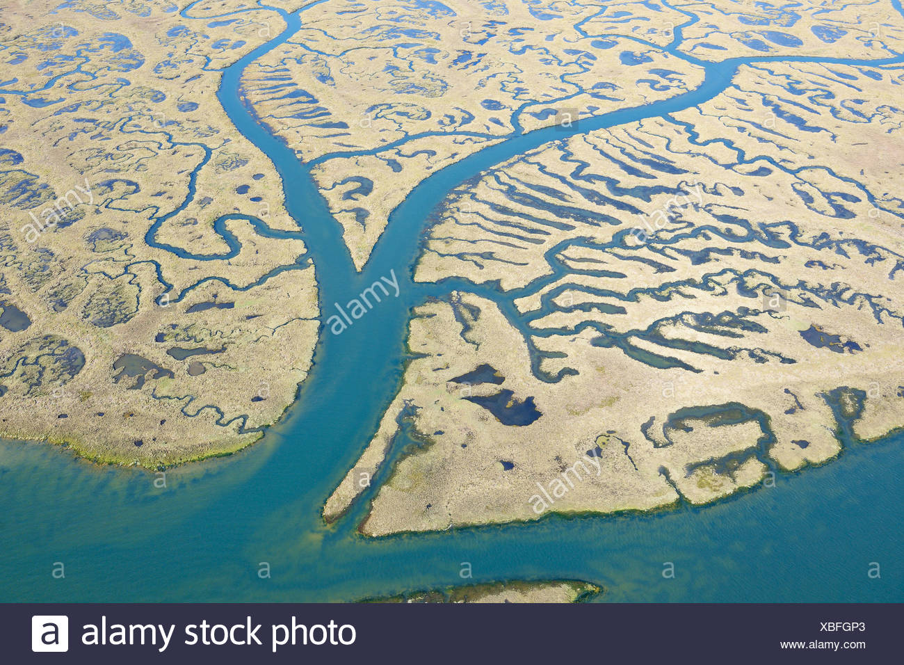 Spain, Andalusia, View of marshland - Stock Image