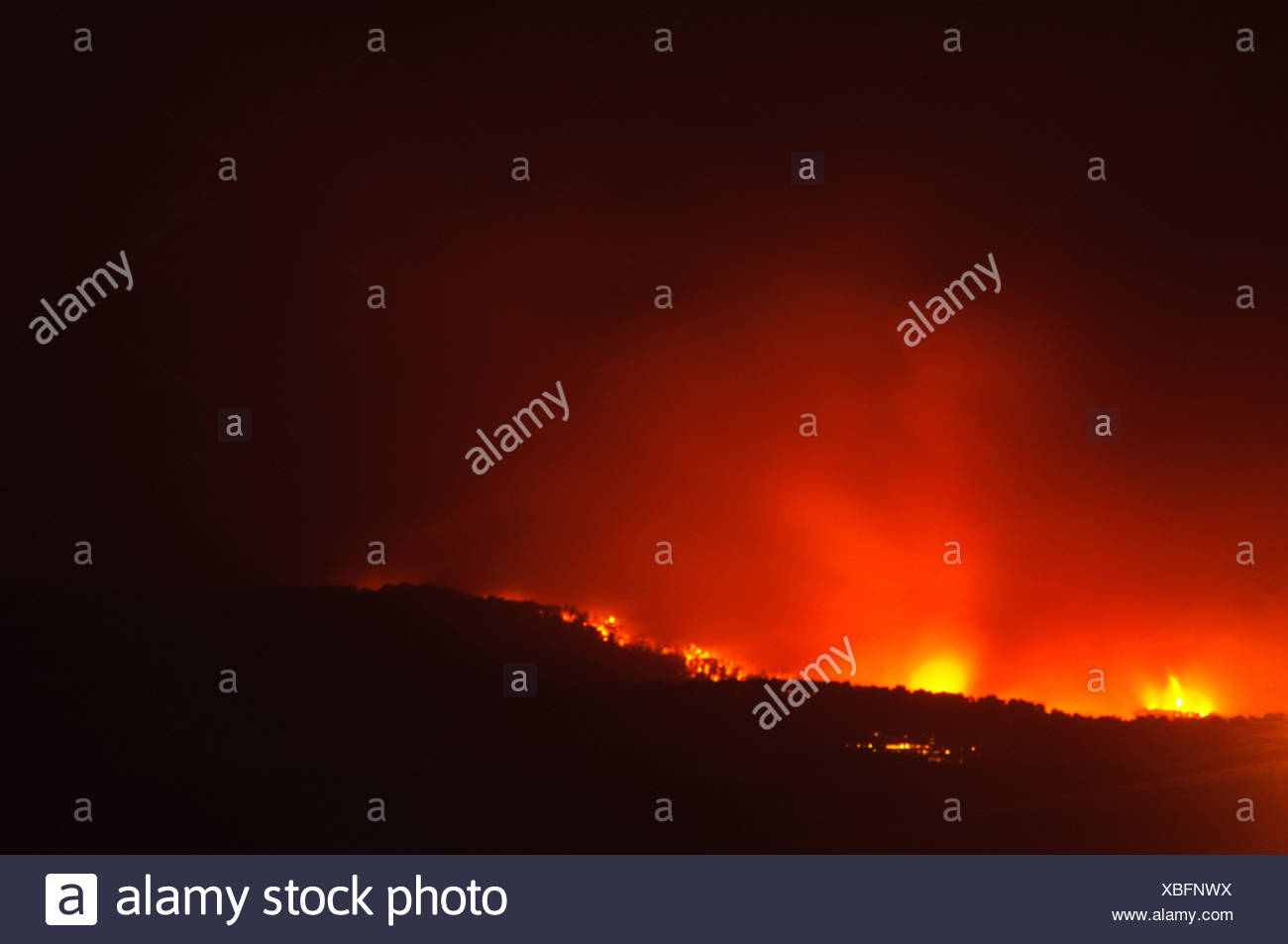 40 people killed on bus as huge forest fire rages on the Carmel Mountain South of Haifa Stock Photo