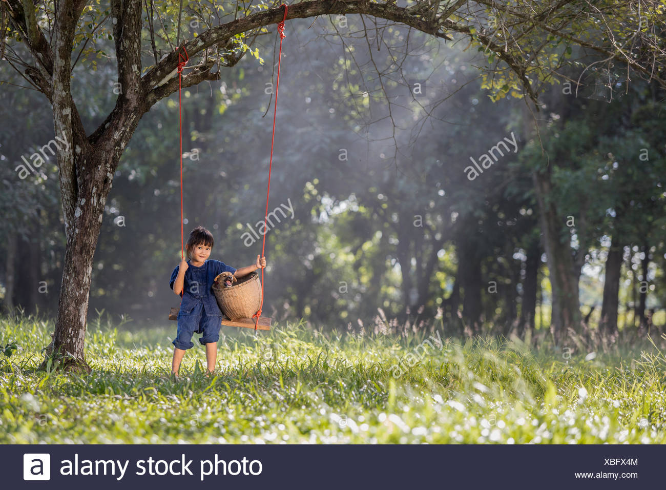 Girl sitting on swing with her dog - Stock Image