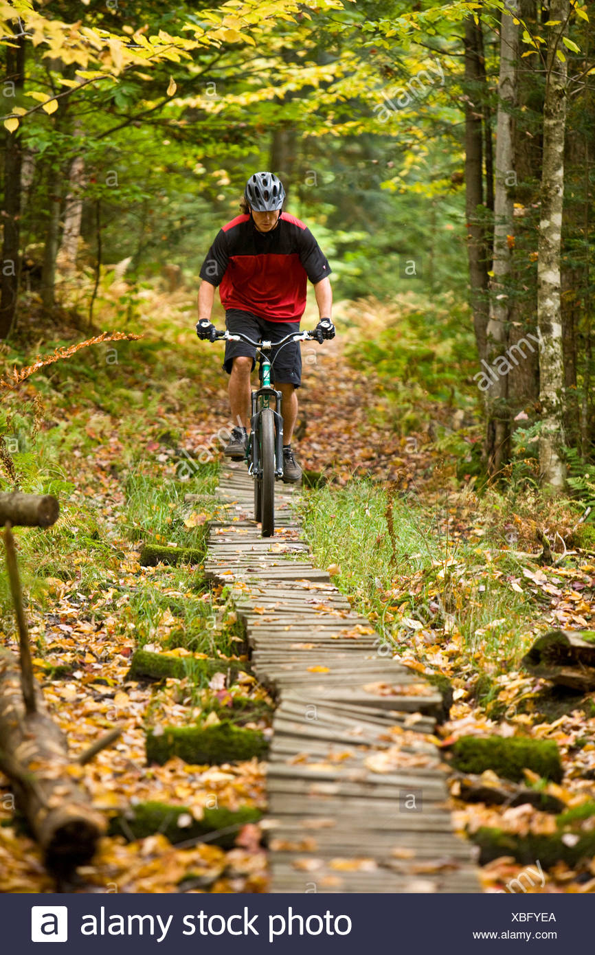 Mid adult man mountain biking through the Green Mountians, on the longtrail in Stowe Vermont, USA - Stock Image