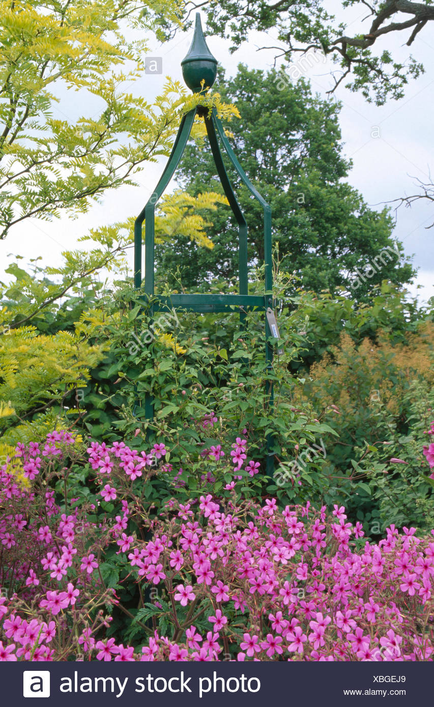 Pink Flowering Perennials In Front Of Tall Metal Obelisk In Large