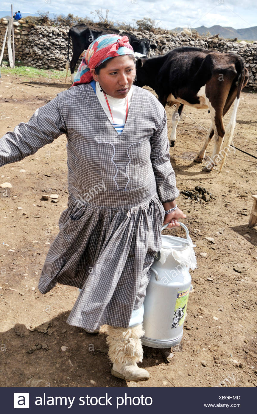 Dairy cow farming, woman with milk churn, Altiplano Bolivian highland, Oruro Department, Bolivia, South America Stock Photo