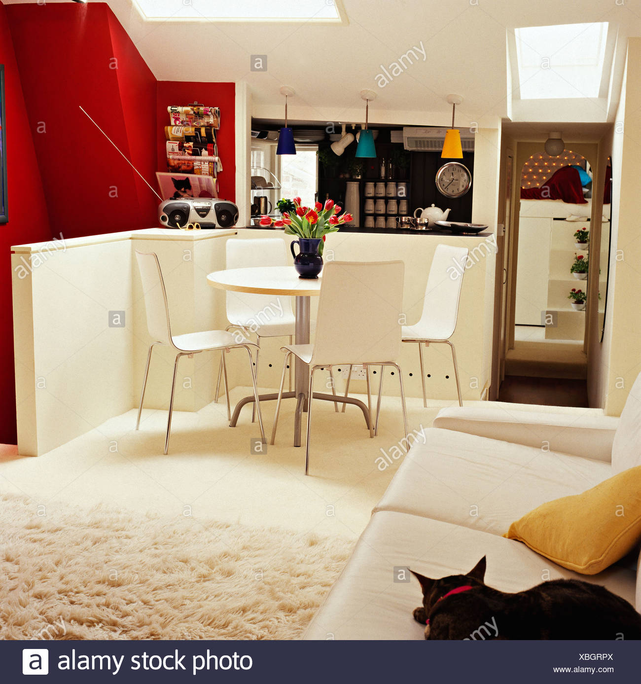 Cat Sitting On White Sofa In Dining Area Of Modern Loft Conversion  Apartment With Sheepskin Rug And White Table And Chairs