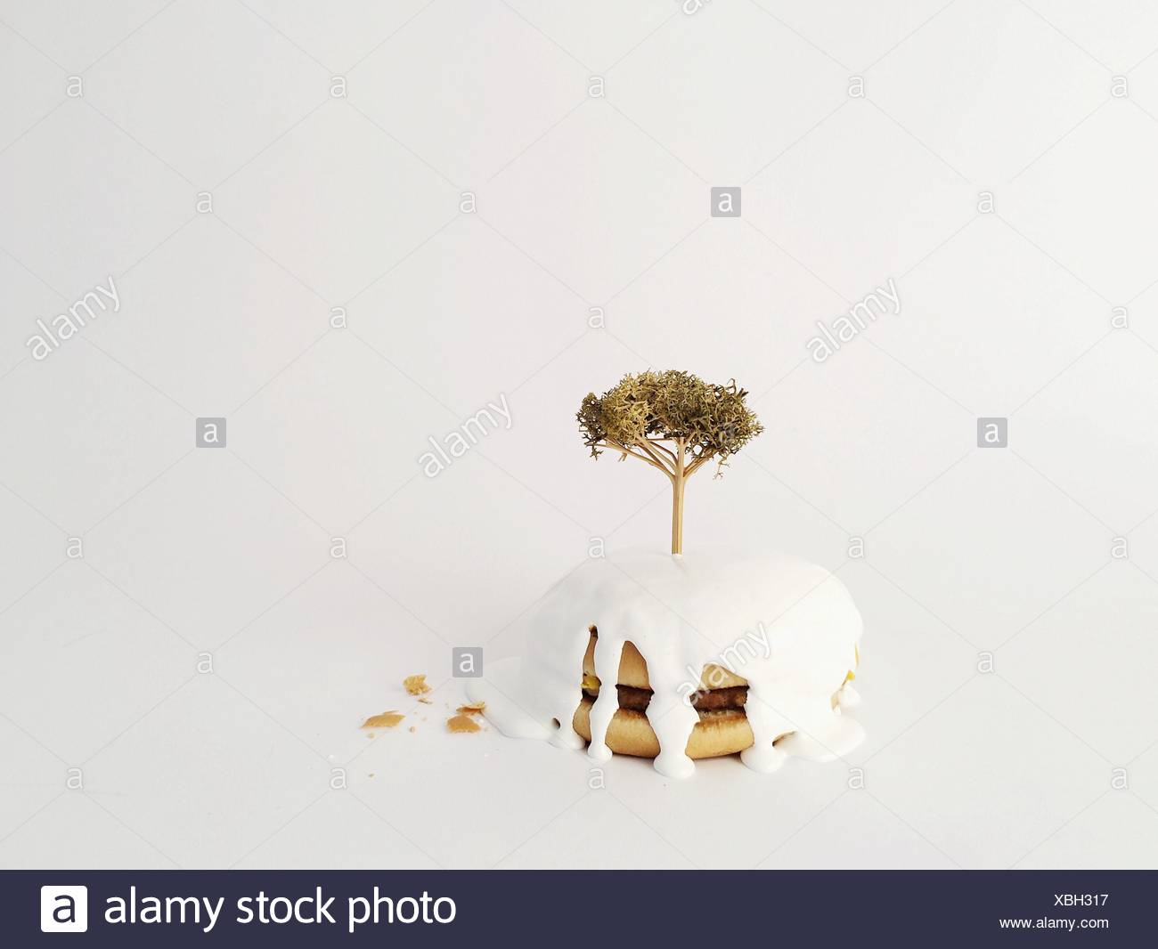 Plant Of Burger Against White Background - Stock Image