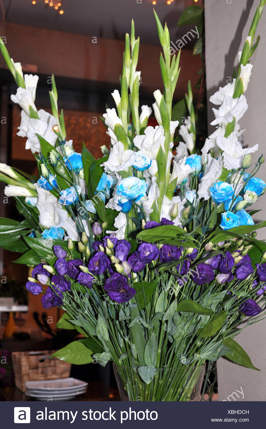 White Blue and purple Flower bouquet - Stock Image