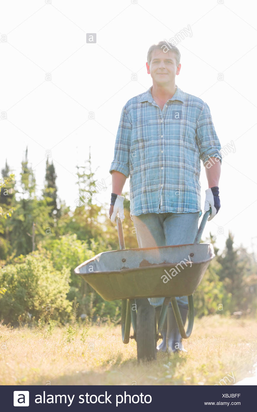 Portrait of male gardener pushing wheelbarrow at garden - Stock Image
