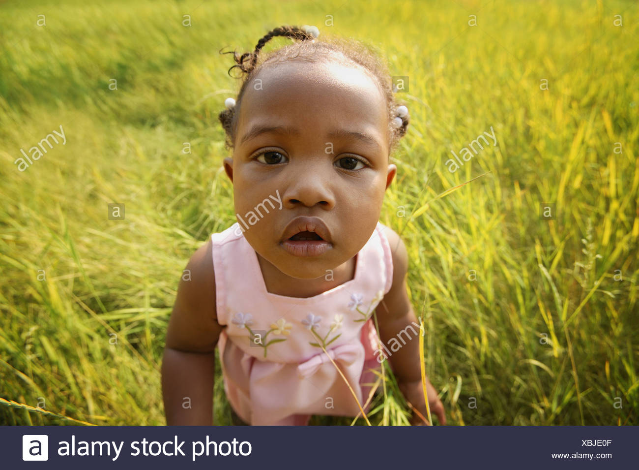 Child in a field - Stock Image