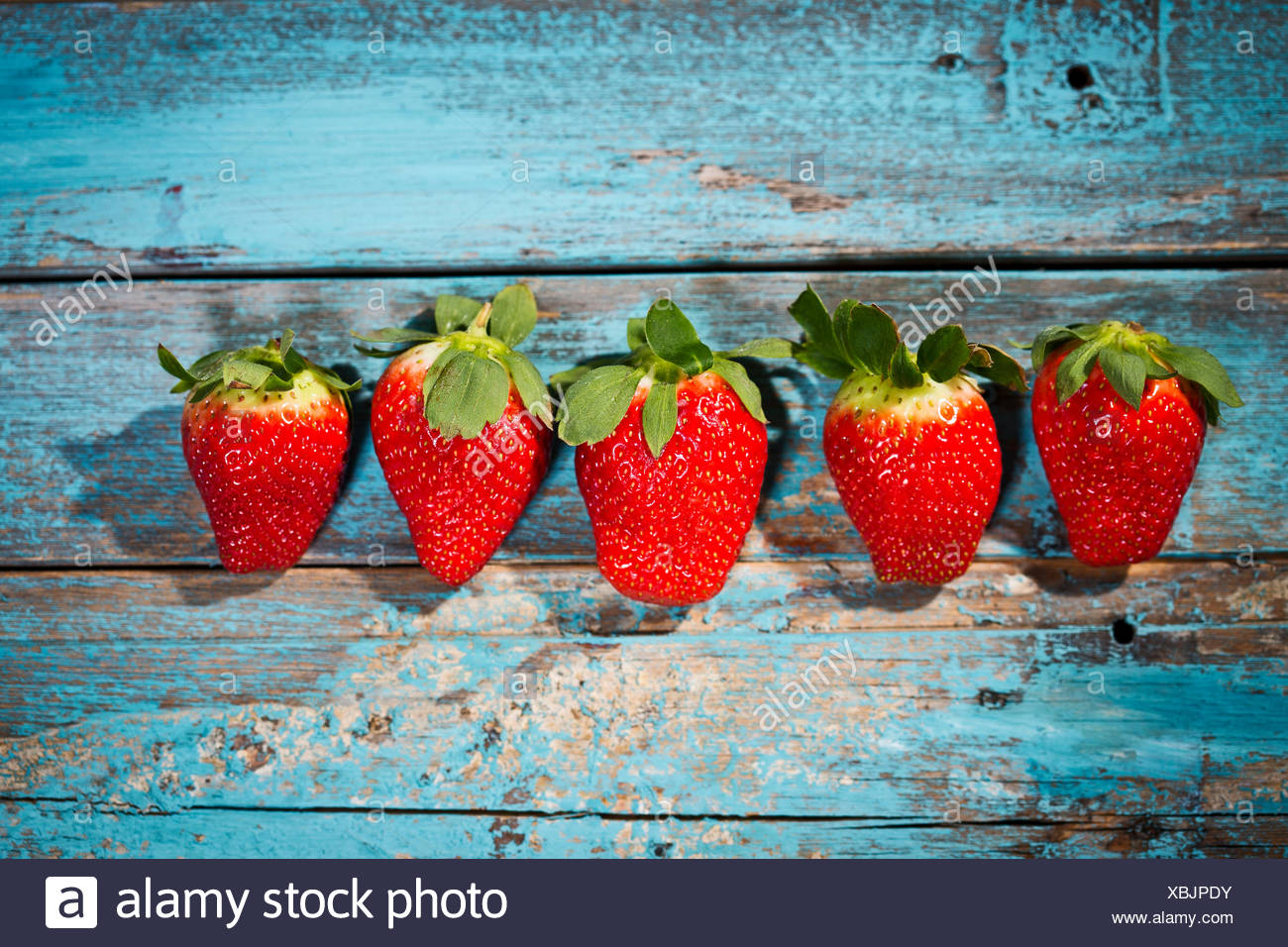 Row of five strawberries on blue wood - Stock Image