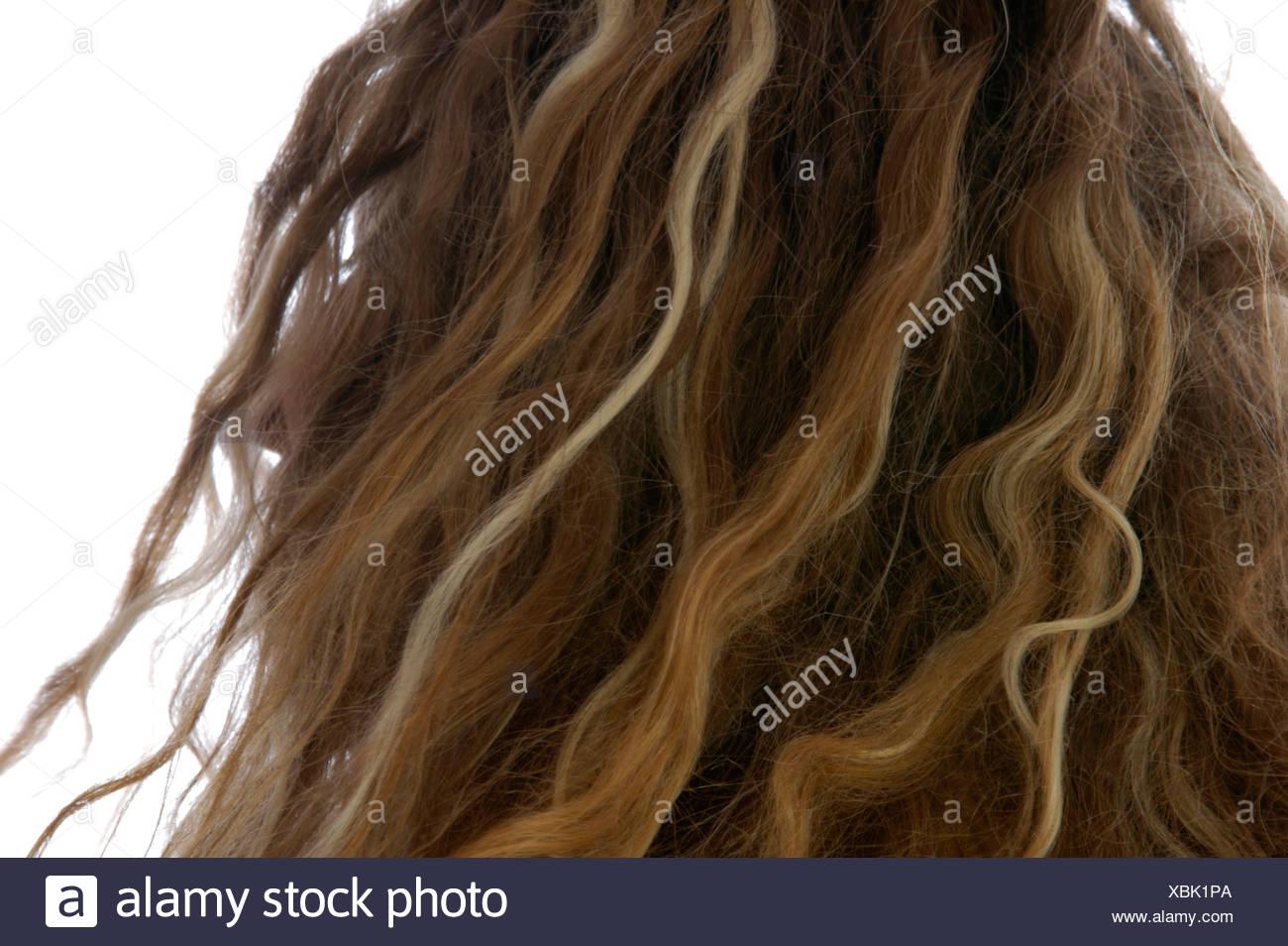 Hair Dress Fair Fashion Girl Hair Cut Head Mixup Weather Young Stock