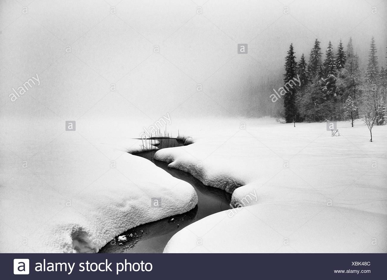 Norway, Winter landscape - Stock Image