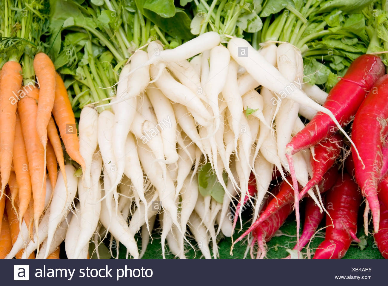 radish carrots - Stock Image