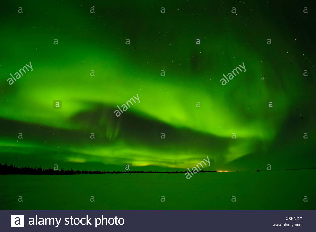 Northern Lights, aurora borealis above the Arctic, Hudson Bay, Manitoba, Canada - Stock Image