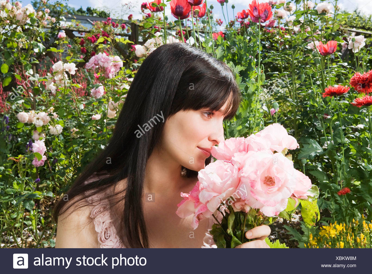 Woman smelling roses in garden - Stock Image