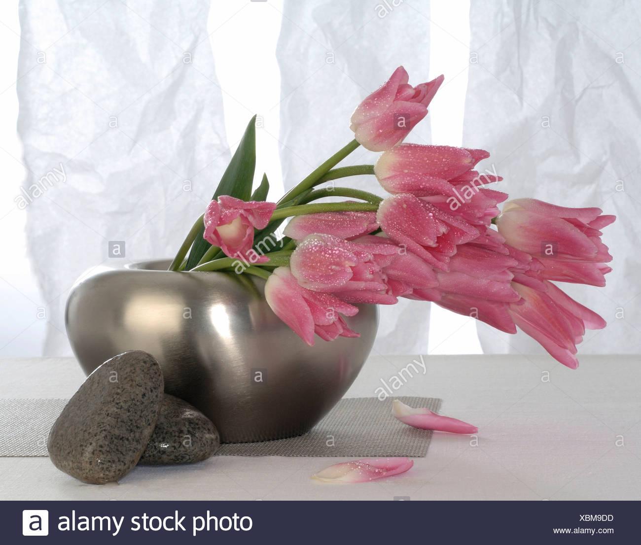 Rose Tulip Bouquet Stock Photo Alamy