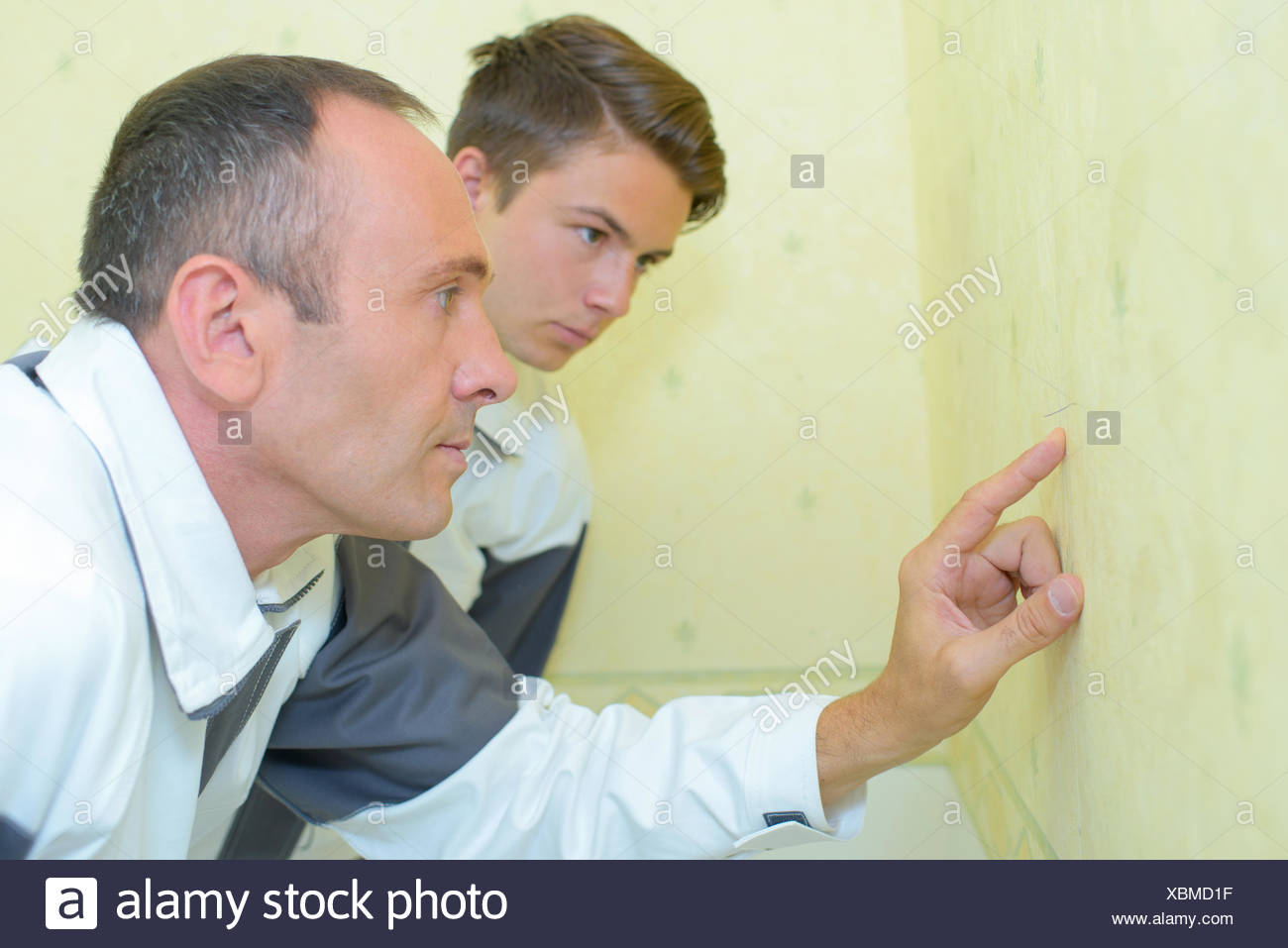 Decorators inspecting wall Stock Photo: 282576379 - Alamy