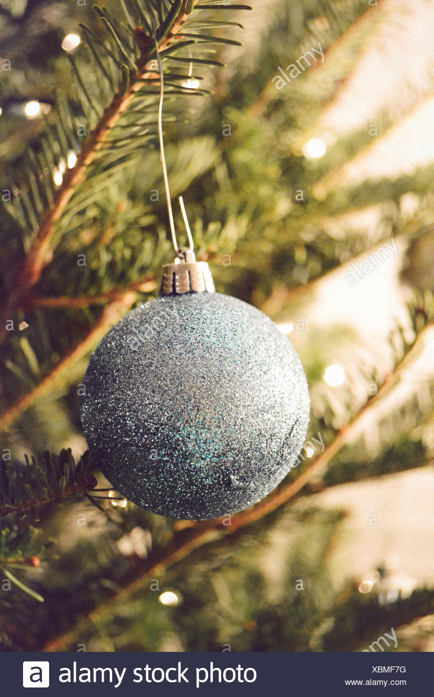 Christmas bauble hanging on spruce branch - Stock Image