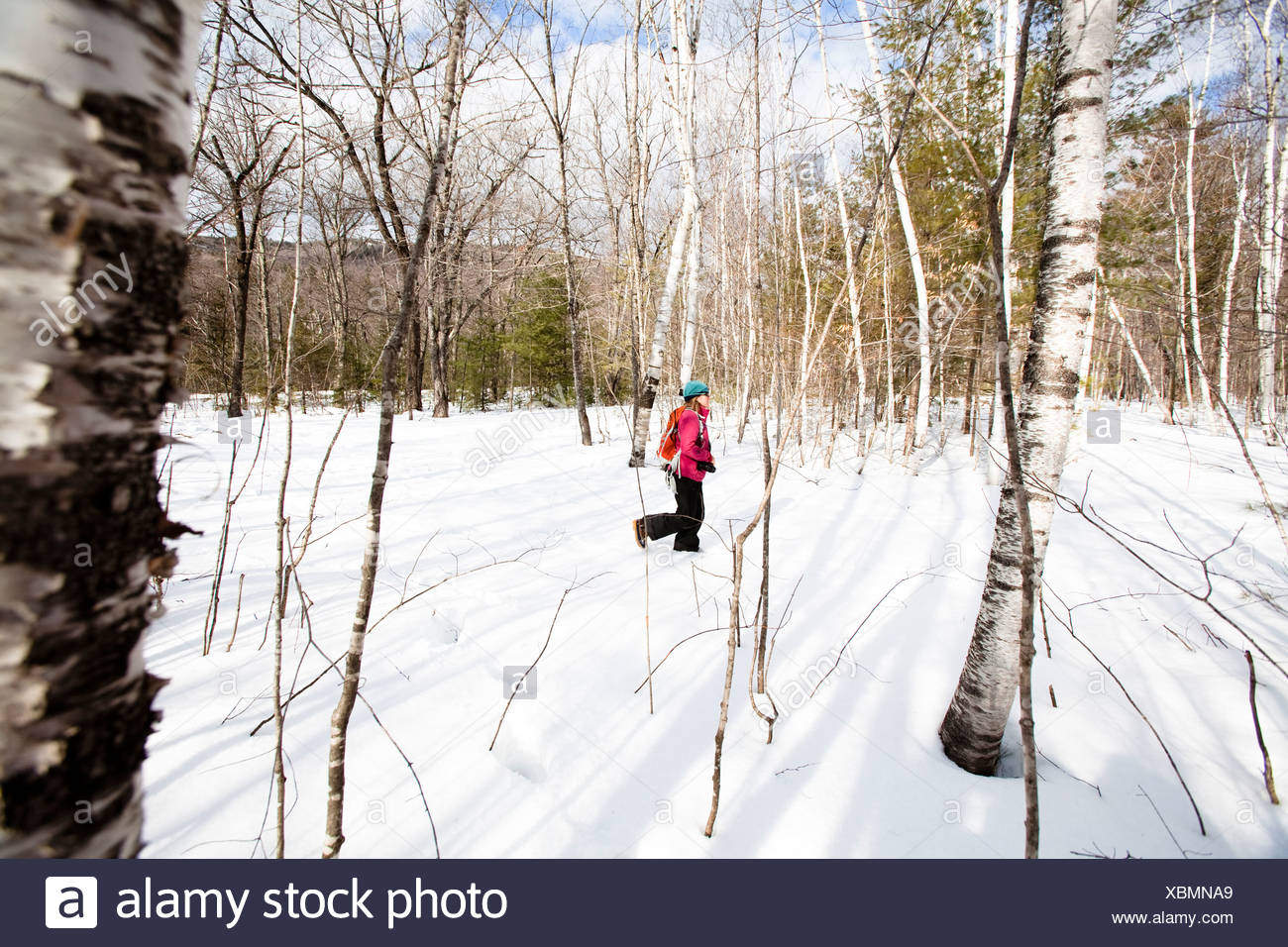 A woman snowshoes on a trail off the Kangamangus Highway near Conway, New Hampshire. - Stock Image