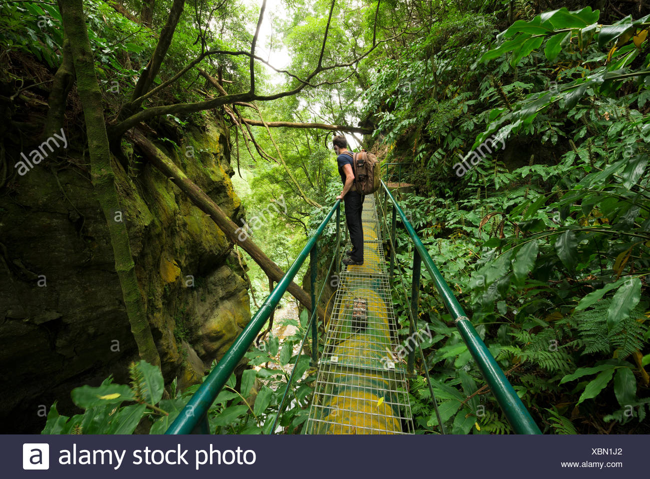 Travelling path about the somersault Th Cabrito, waterfall on Sao Miguel, the Azores, Portugal Stock Photo