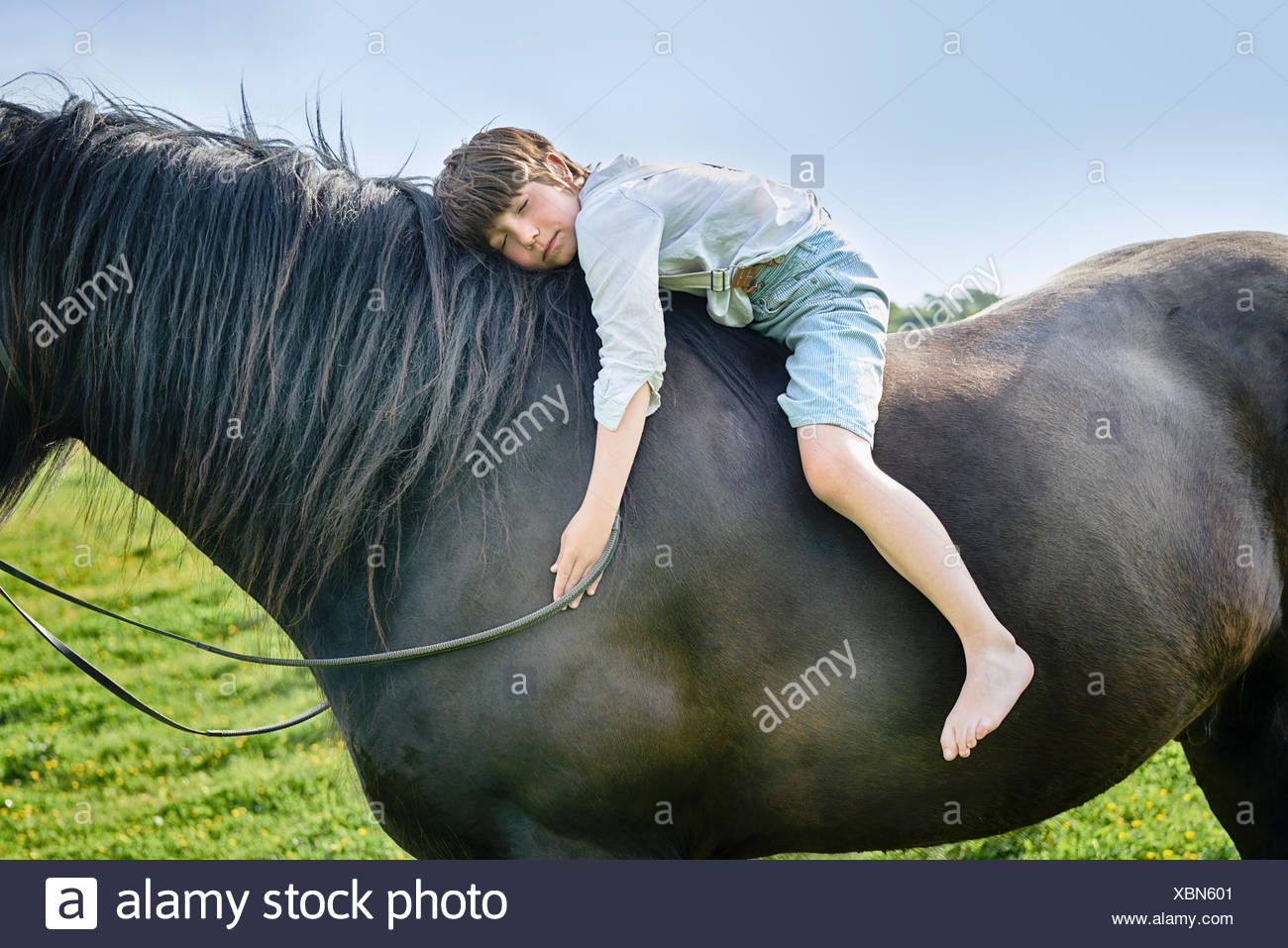 Cropped shot of boy leaning forward with eyes closed on horse in field - Stock Image