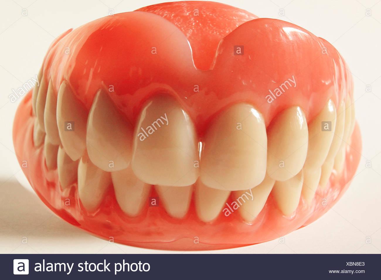artificial denture - Stock Image