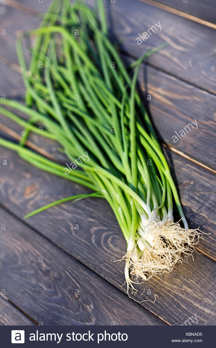 Close up of chives on wooden table - Stock Image