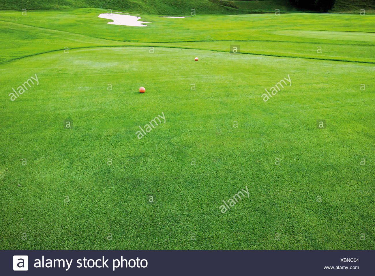 Germany, Bavaria, View of golfball on golfcourse - Stock Image