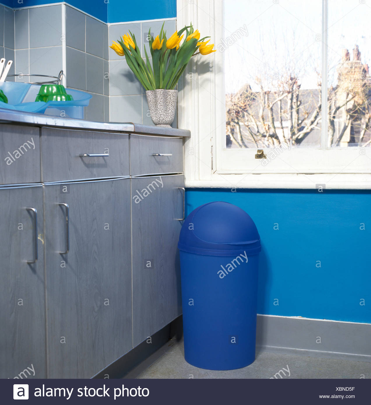 Bin Blue Domestic Stock Photos & Bin Blue Domestic Stock Images - Alamy