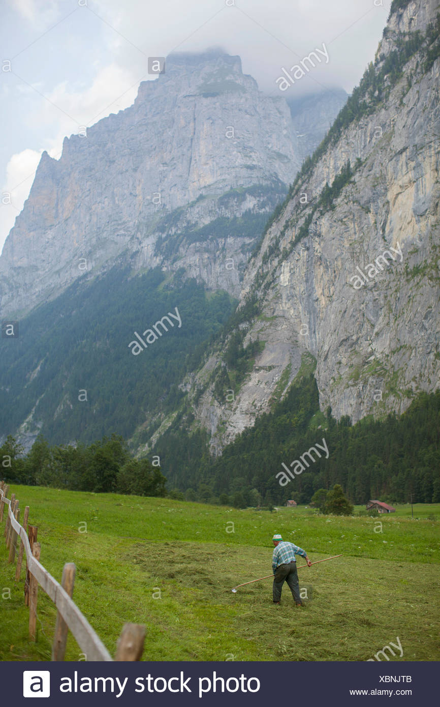 An unidentified man working in a green pasture at the base of big mountains in Lauterbrunnen.  Switzerland. - Stock Image