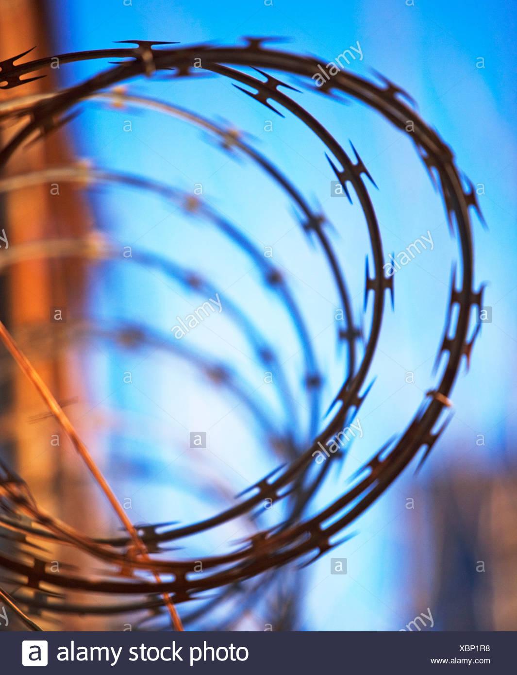 Close up of coiled razor wire Stock Photo