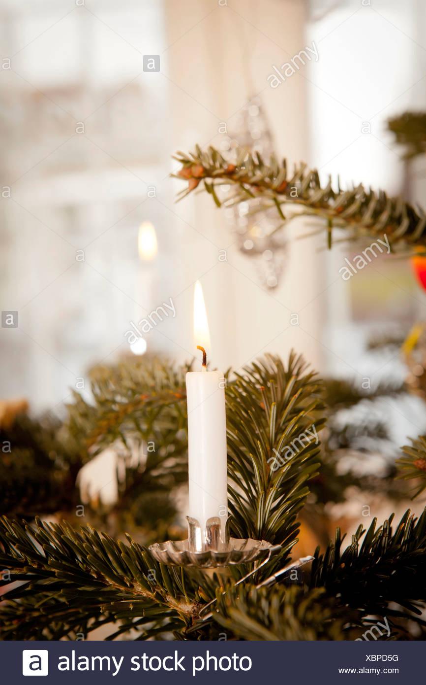 Christmas tree with candlelight, Munich, Bavaria, Germany - Stock Image