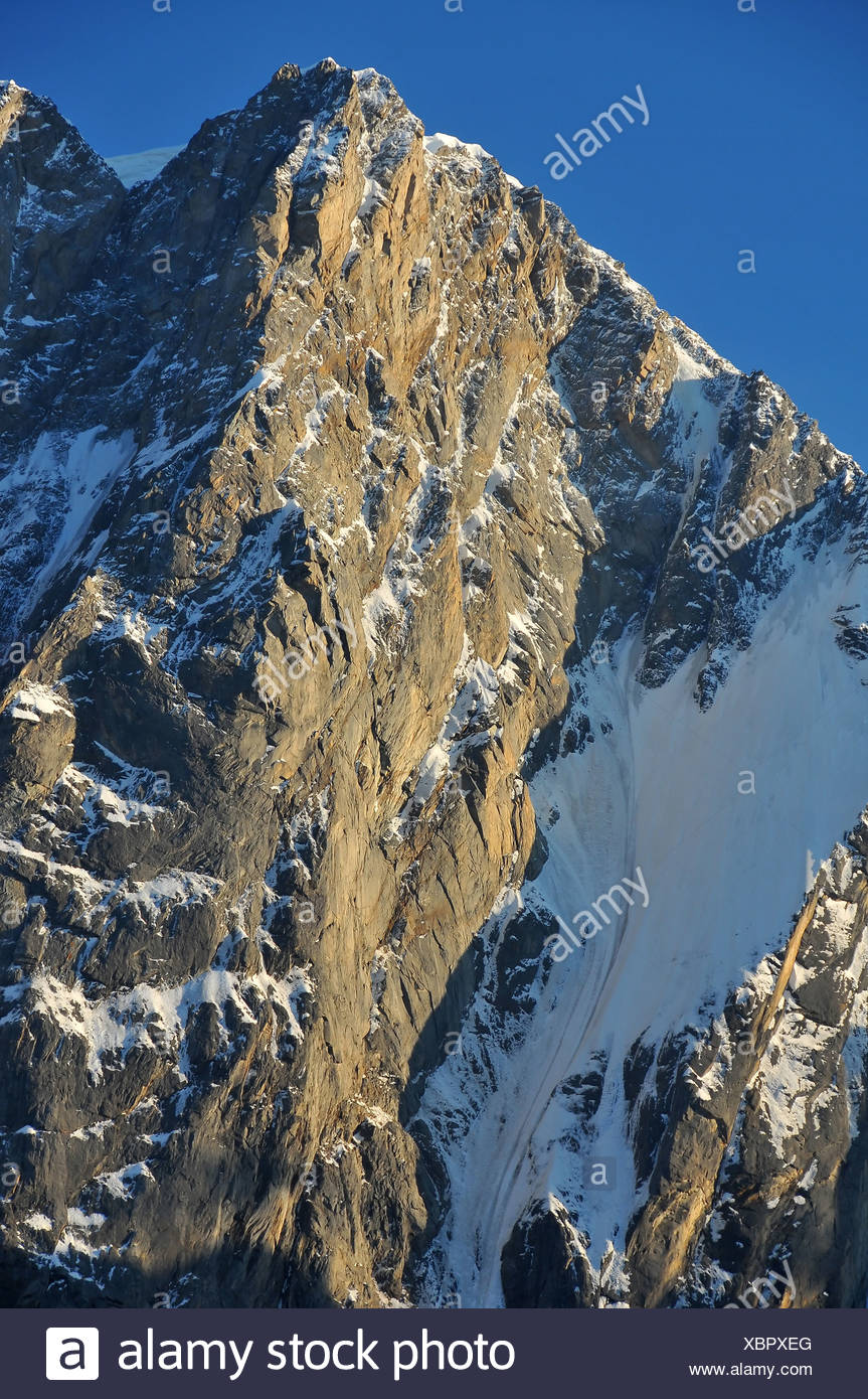 Pointe Walker one of the two main summits of the Grandes Jorasses in the french alps above Chamonix - Stock Image