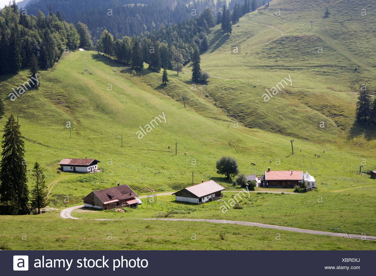 Germany, Bavaria, Bayrischzell, Houses in the valley - Stock Image