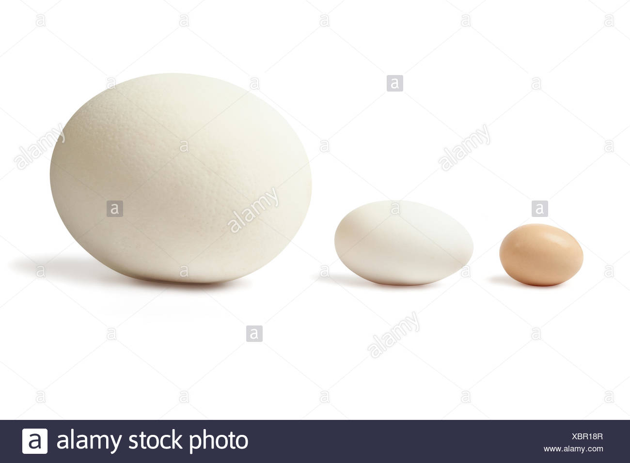 Thre eggs lined Stock Photo
