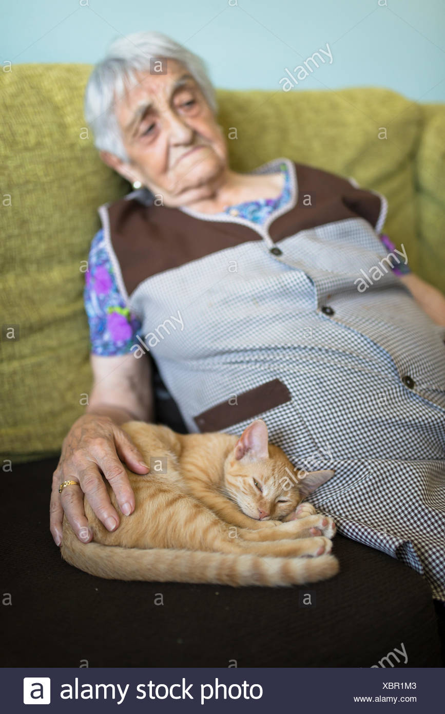 Tabby kitten snoozing besides old woman on the couch at home - Stock Image