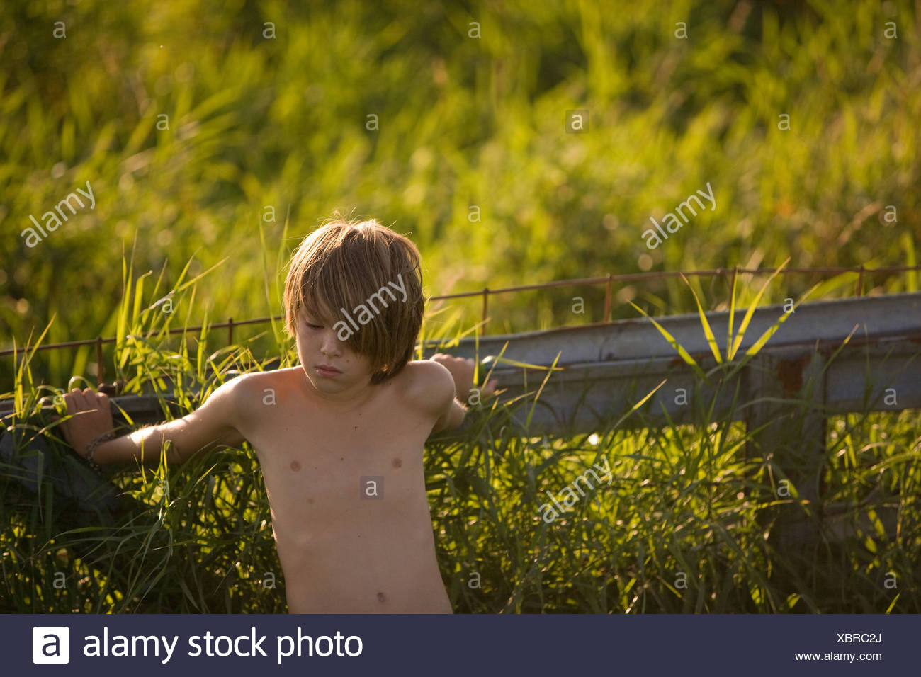 Boy leaning on fence in field - Stock Image