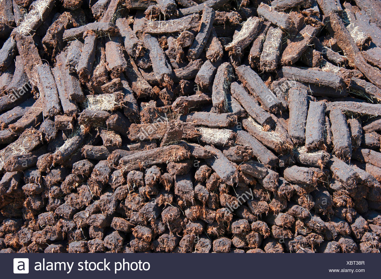 peat cutting, heap with sods of peat, Germany, Lower Saxony, Wilhelmsfehn - Stock Image