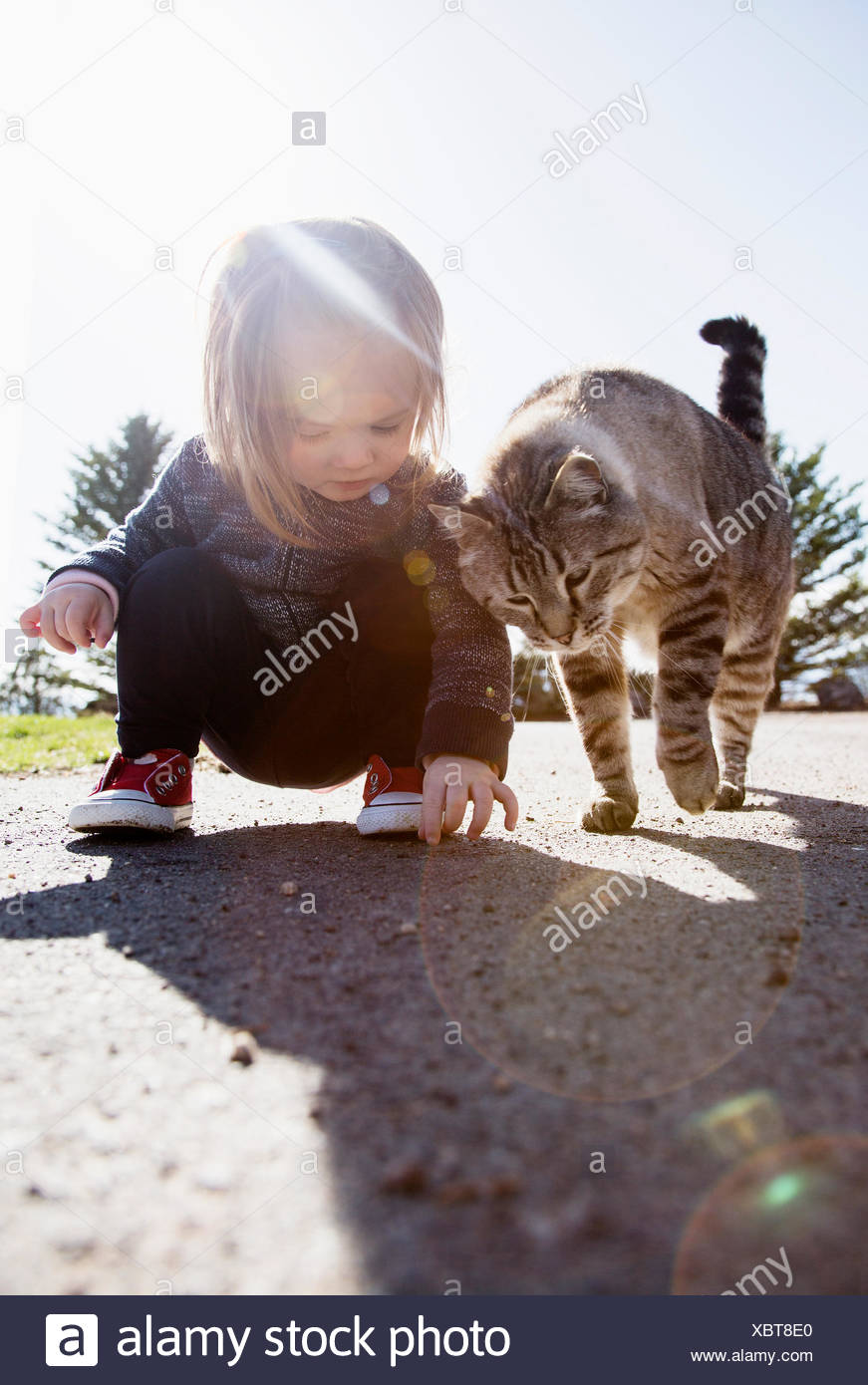 Crouching girl (2-3) and cat - Stock Image
