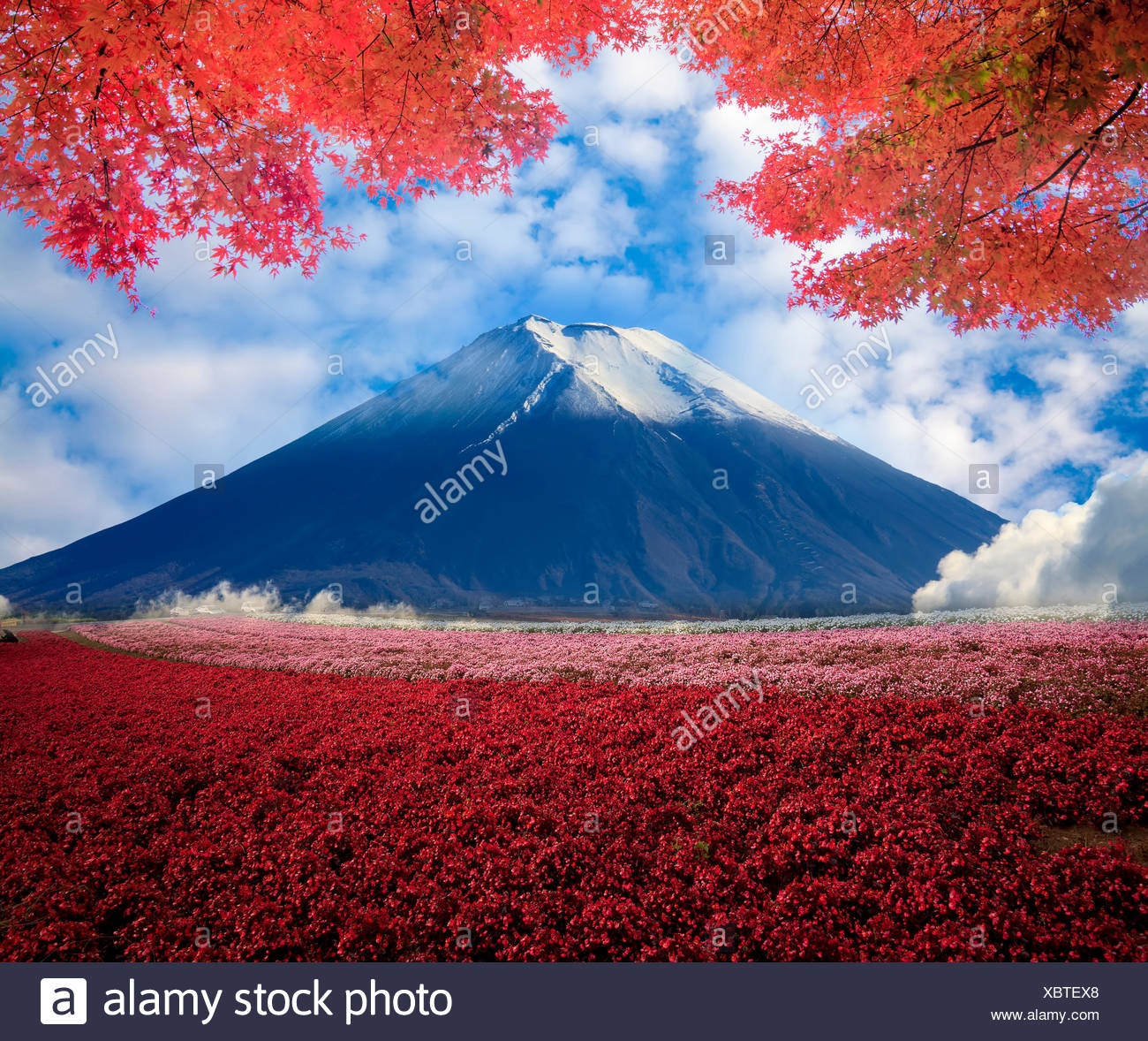 imaging of beautiful landscape with nice nature color Stock Photo - Alamy