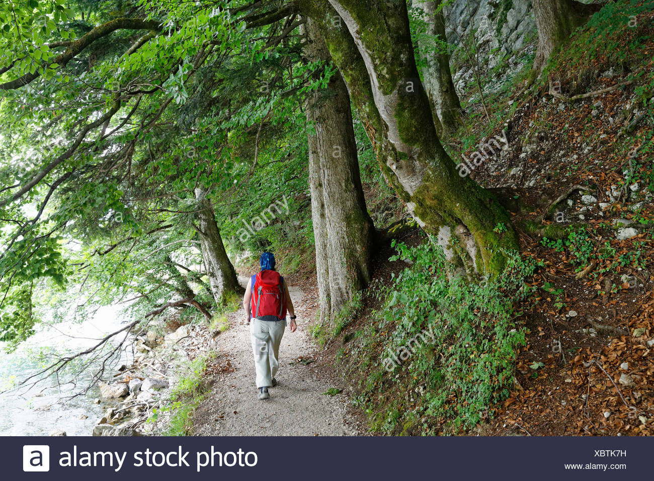 Austria, Salzkammergut, Salzburg State, Sankt Gilgen, Brunnwinkl, Female hiker at Lake Wolfgangsee - Stock Image