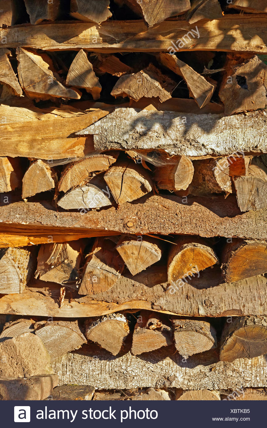 Europe, Germany, Europe, Rhineland-Palatinate, Erlenbach bei Dahn, castle, Berwartstein, wooden pile, detail, mood, still life, p Stock Photo