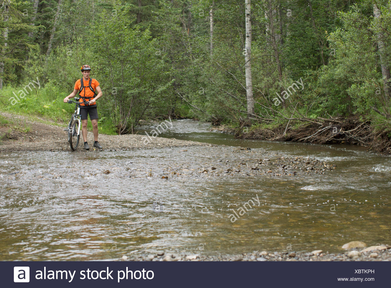 mountain biker standing by edge of stream in the woods - Stock Image
