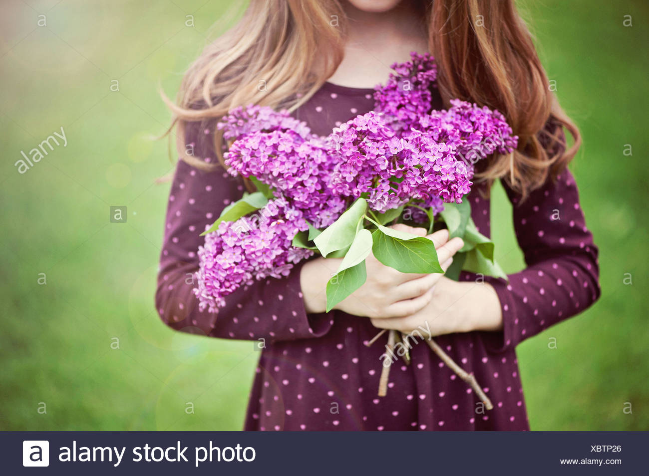 Close-up of a girl holding bunch of lilac flowers - Stock Image
