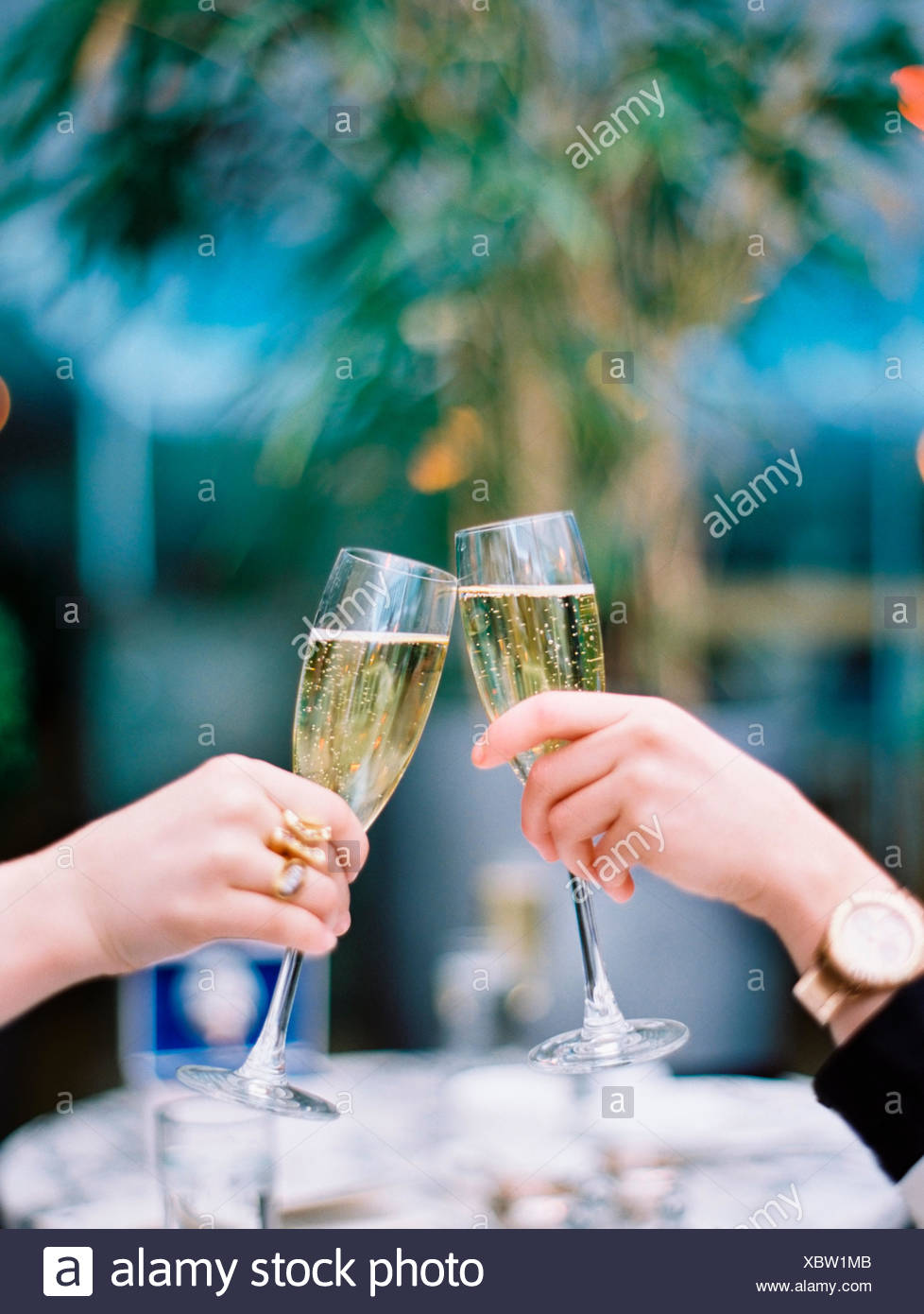 Two women toasting each other with glasses of champagne. - Stock Image