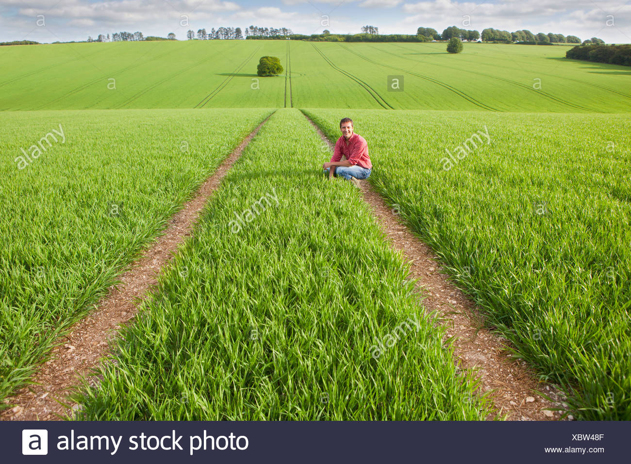 Portrait of farmer squatting in field - Stock Image