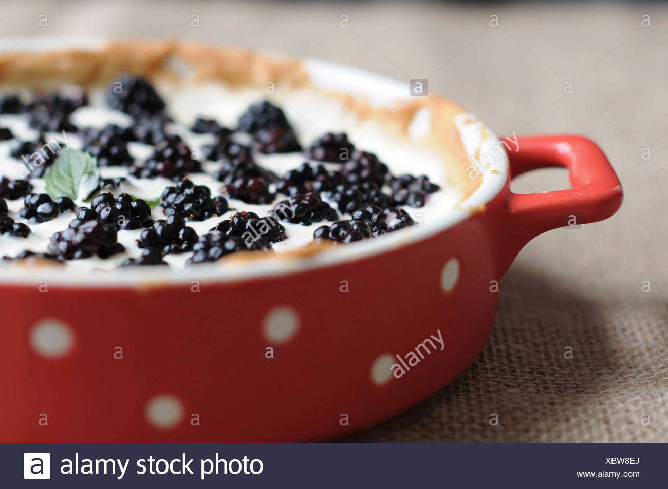 Blackberry tarte - Stock Image